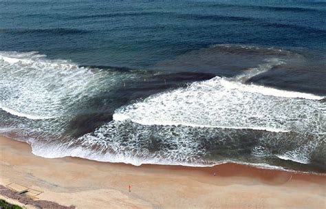 What are rip currents and why have they been so deadly