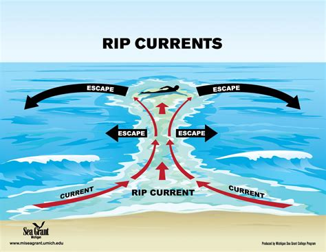 How to spot a rip current and get past it   The Triton